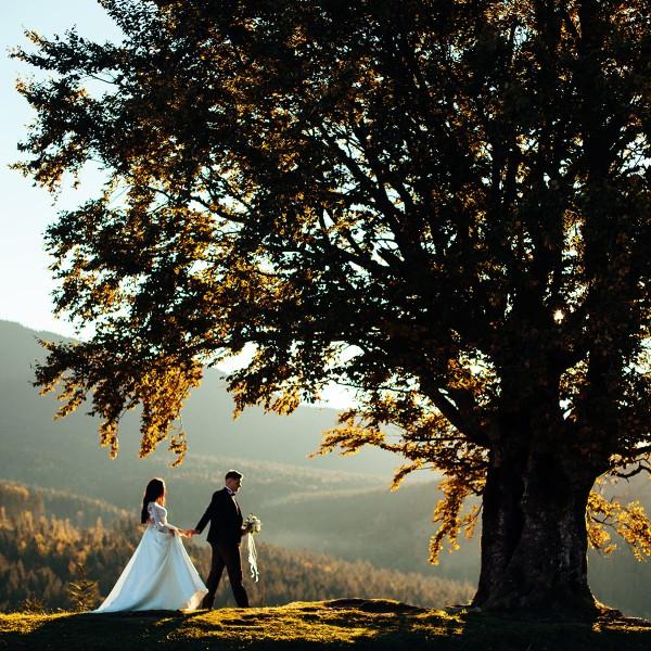 weddingtree_der_gaestebaum_auf_leinwand_symbolik